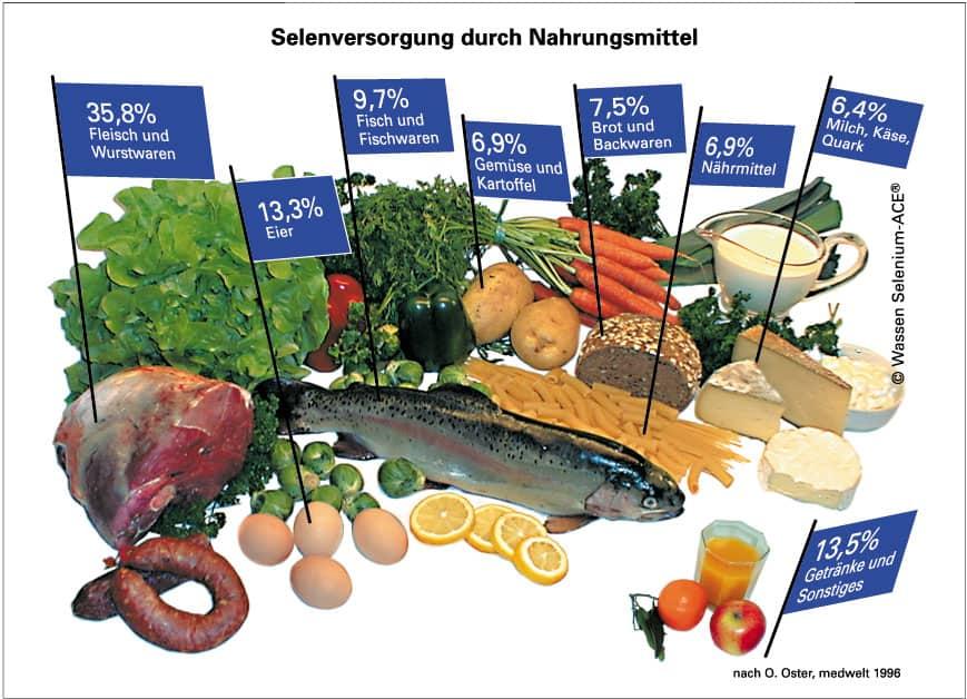 Selenversorgung durch Nahrungsmittel